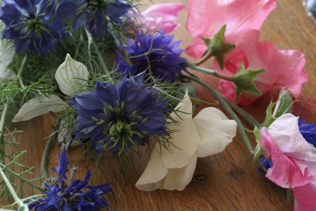 sweet peas & nigella, essential summer flower ingredients